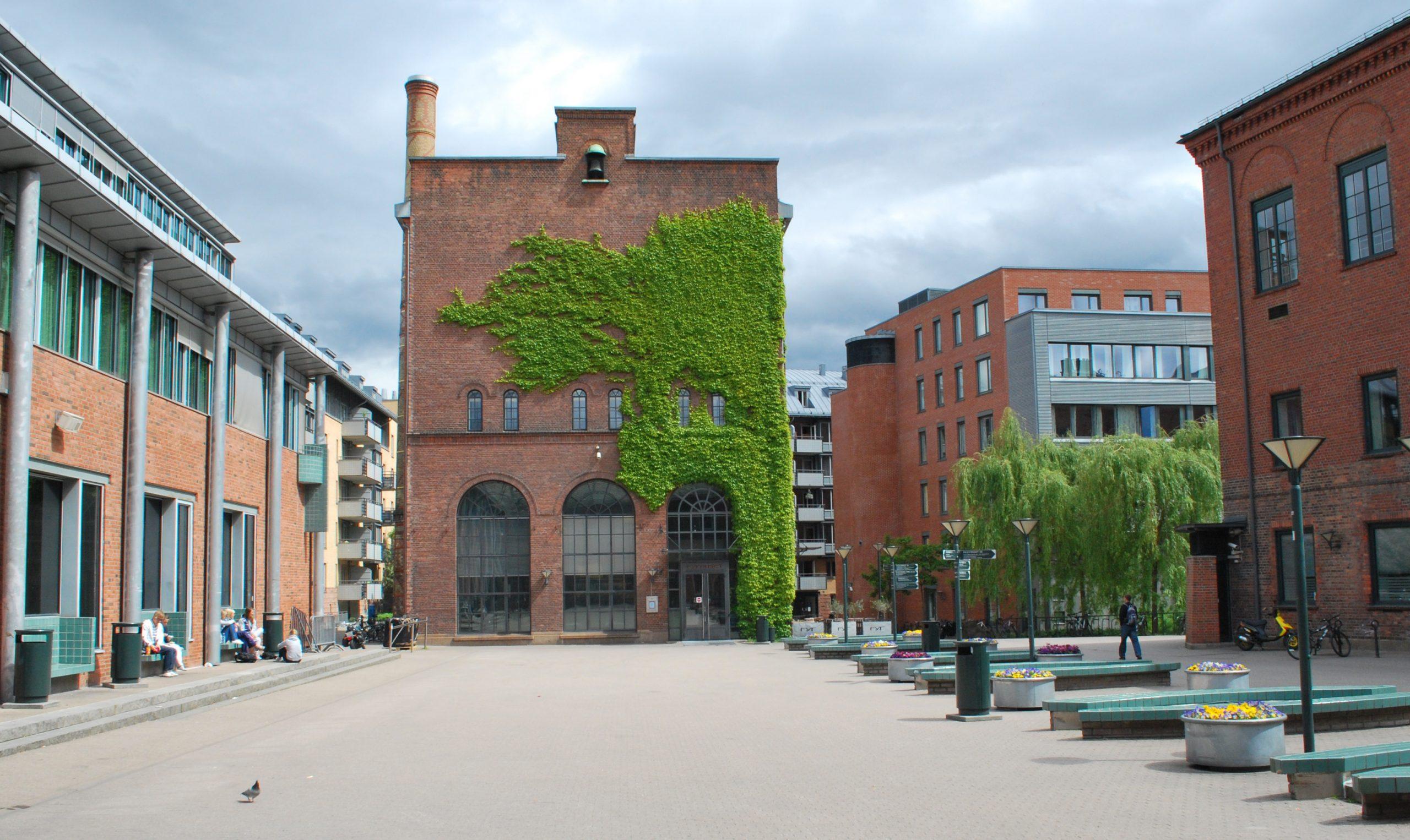 Det nyaste universitetet i Oslo kan bli nødt til å følgja norske rettskrivingsreglar. Foto: Helge Høifødt [CC BY-SA 4.0]